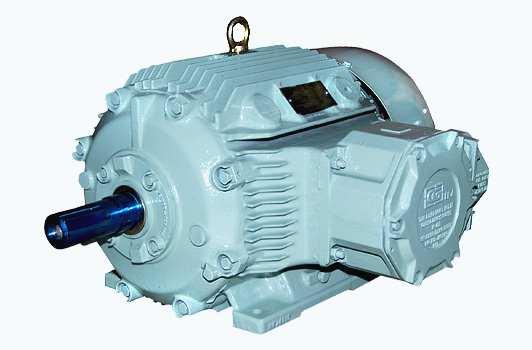 Cast Iron Enclosure Motors