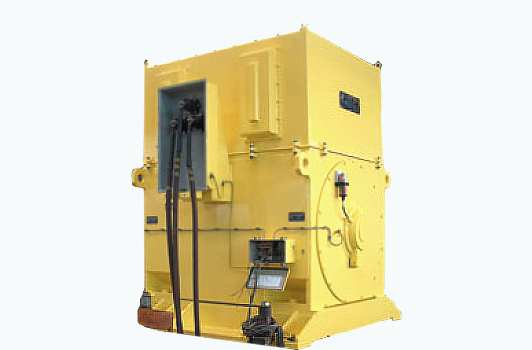 Double Cage Motor For Cement Mill