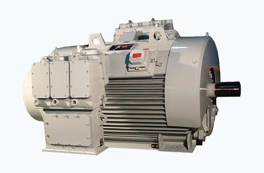 Fan Cooled Induction Motor